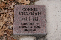 Connie Chapman