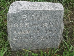 Biddie Boston
