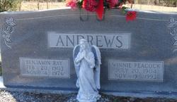 Benjamin Ray Andrews