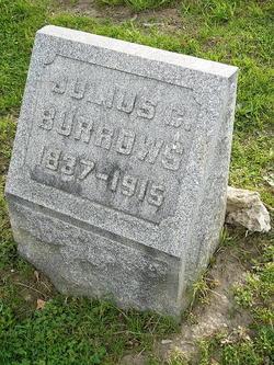 Julius Caesar Burrows