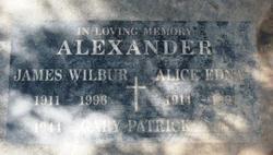 James Wilbur Alexander