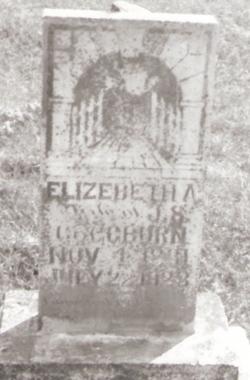 Elizabeth Ann <i>Allen</i> Coggburn