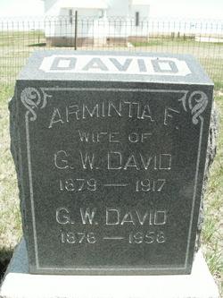 Armintia F. David