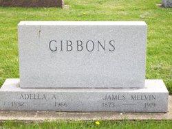 Adella A <i>Horner-Gibbons</i> Hostetter