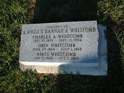 Amos Whitcomb