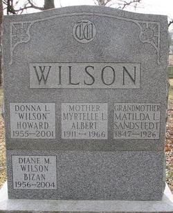 Diane M <i>Wilson</i> Bizan