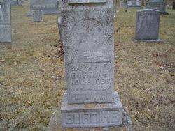 Sarah F Burdine