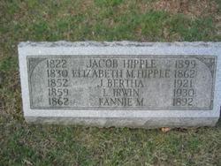 Lewis Irwin Hipple