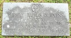 Henry William Rufus Blevins