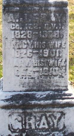 A. J. Gray