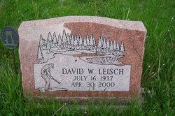 David Wayne Leisch