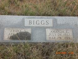 Amanda E Biggs