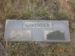 Peter H Cavender