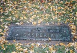 Stephen Steve Gasperik