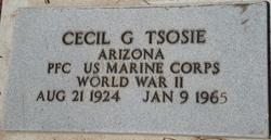 Cecil G Tsosie