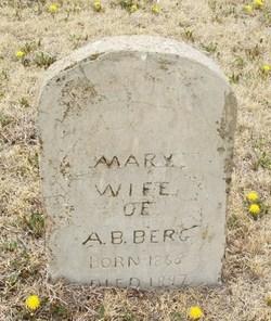 Mary <i>Balzer</i> Berg