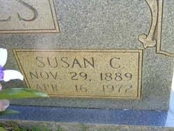 Susan <i>Carroll</i> Falls