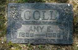 Amy E. Coll