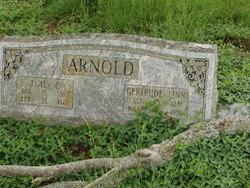 James C Arnold