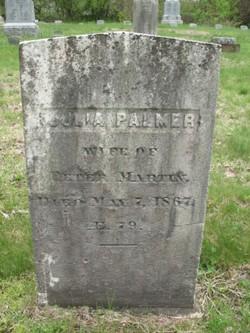 Julia <i>Palmer</i> Martin