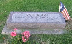 Robert Norman Anderson