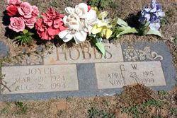 George W. Hobbs
