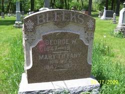 George W. Bleeks