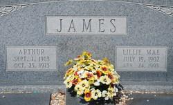 Lillie Mae <i>Jones</i> James