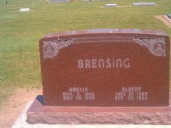 Albert Brensing
