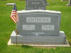 Luke J Anthony