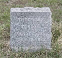Theodore Gibson