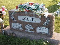 Andrew H Goebel