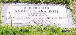 Ana Rose Babcock