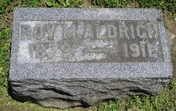 Roy M Aldrich