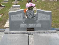 Estelle H. Ashley