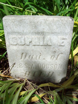 Sophia E. Dobson