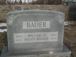 William H Bauer
