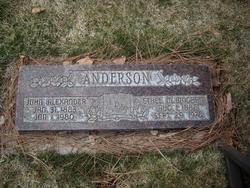 Ethel M <i>Bingham</i> Anderson