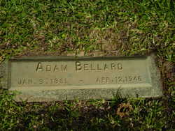 Adam Bellard