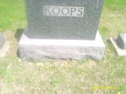 Agnes H.M. Koops