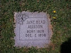 Jane Ann <i>Houston</i> Allison