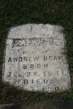 Sarah L Beam