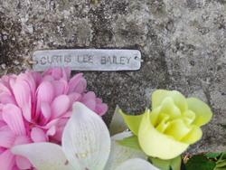 Curtis Lee Bailey