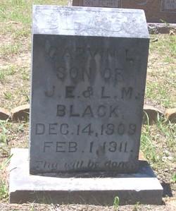 Garvin L. Black