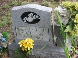 Paul S Arnold