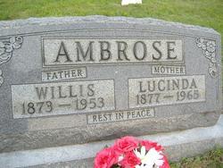 Lucinda <i>Cook</i> Ambrose