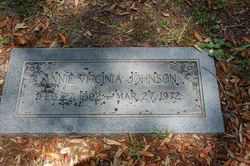 Annie Virginia <i>Peeler</i> Johnson