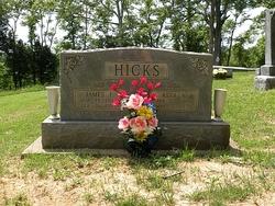 Reva K. <i>Robinson</i> Hicks