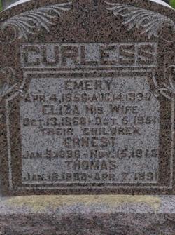 Eliza Jane <i>McKee</i> Curless