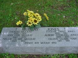 Albert Sterling Jones